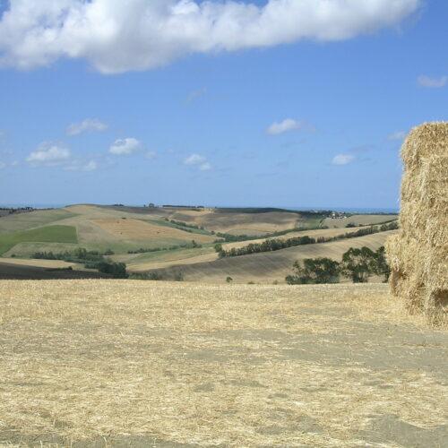 Le Marche, Italië in één regio